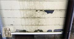 南砺市 住宅 外壁サイディング 塗り替え前の部分張り替え