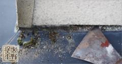 富山市舟橋村 住宅 外壁塗り替え トタン水切りの下地処理
